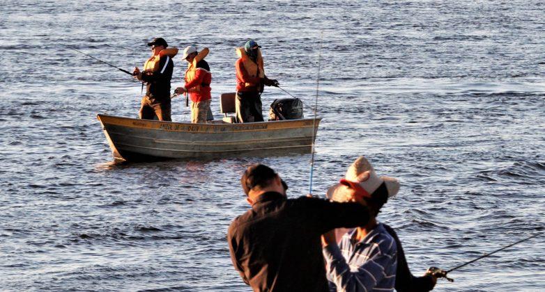 """Atenção para as informações sobre o """"Cota Zero"""" para pesca amadora e desportiva em MS"""
